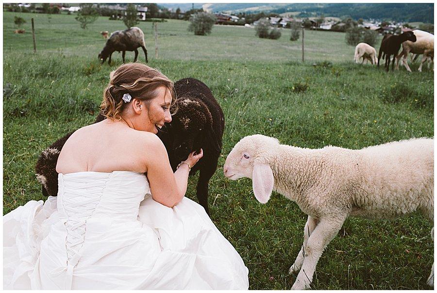 Austria Sheep Wedding