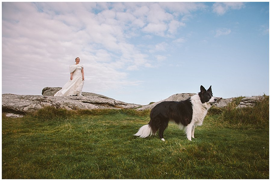 Cornwall After Wedding Pet Shoot