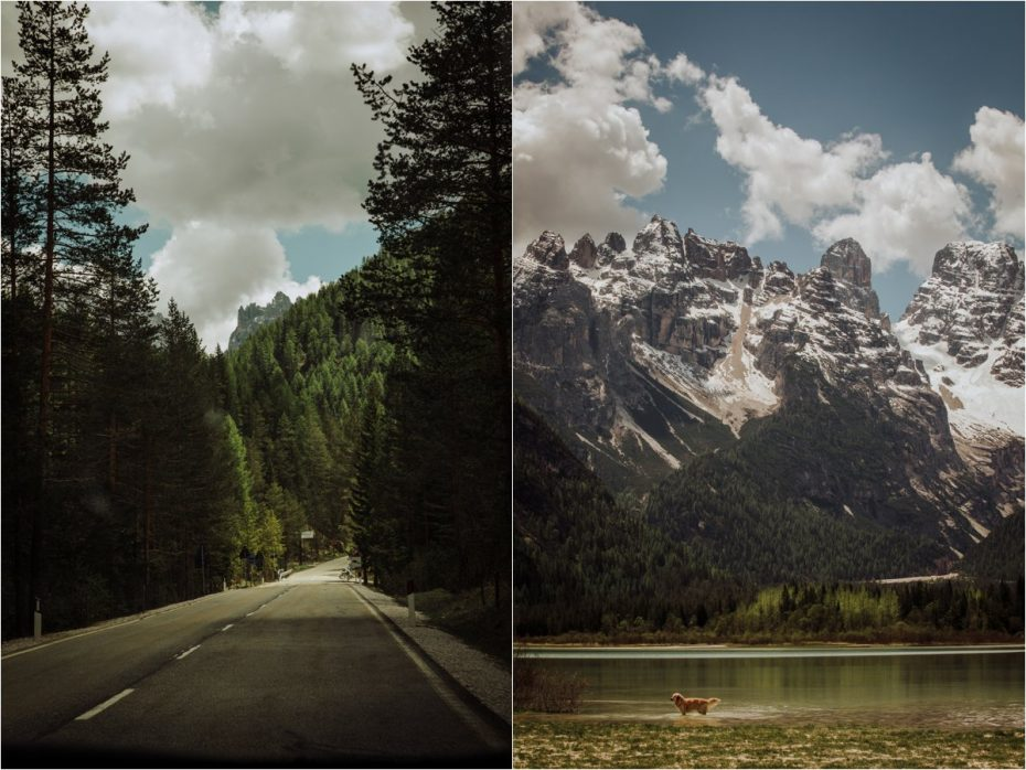 A road with forest either side in the Dolomites in Italy